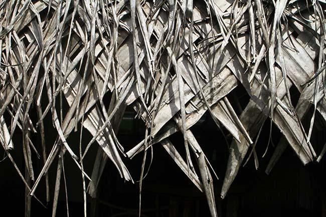 Nervost efter manga skalv pa salomonoarna