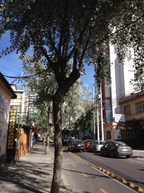 Resetidskrift vill gora gamla stan till varldsarv