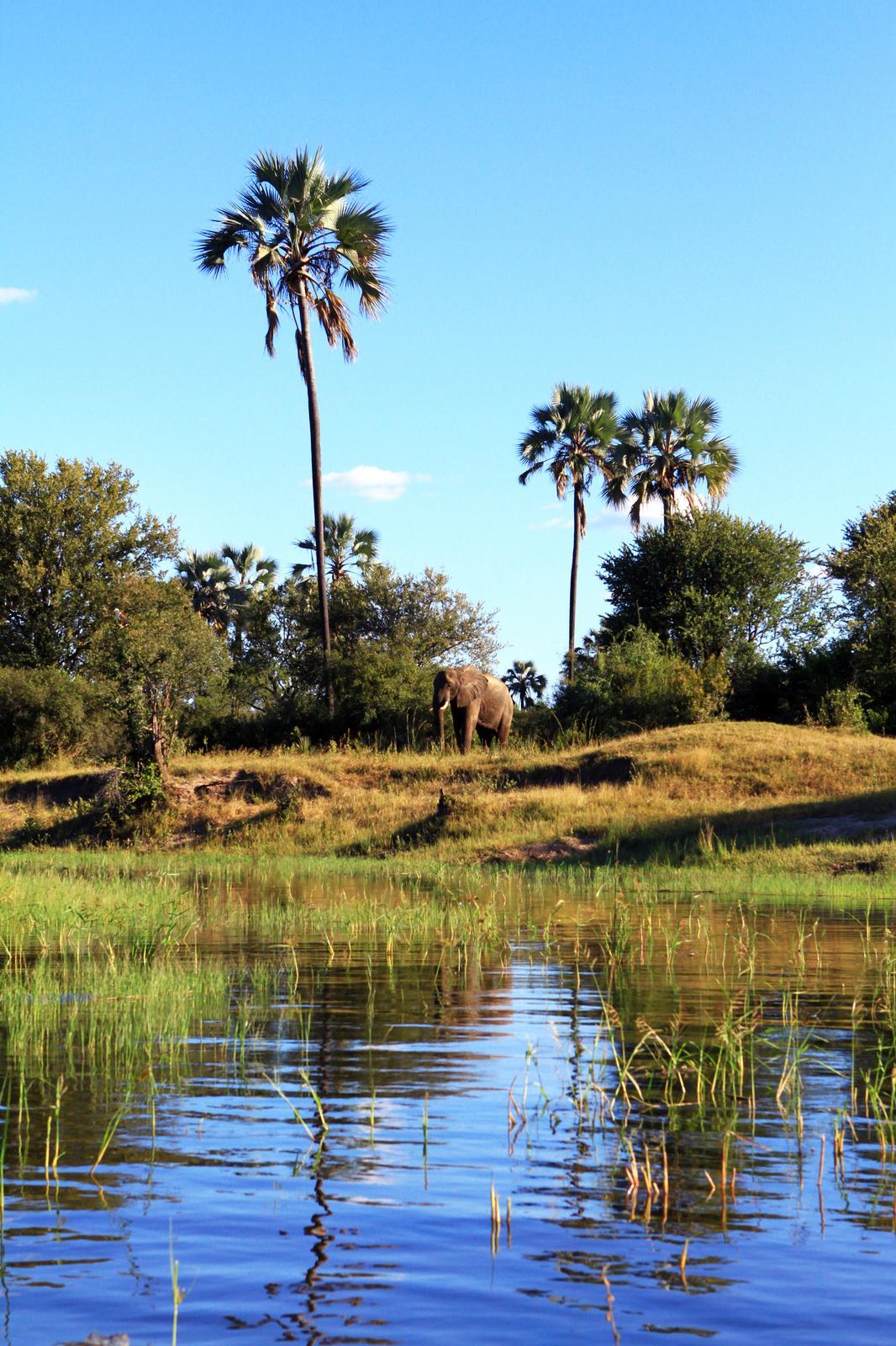 Afrikas aldsta nationalpark i fara