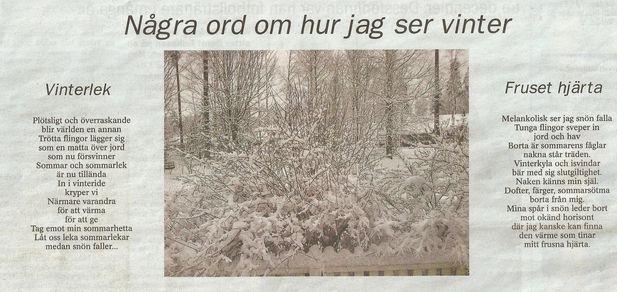 Mina tankar och känslor om vintern. Dikter skrivna år 2009.